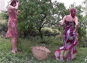 Julie et Leeloo bais&eacute_es dans un champ apr&egrave_s ague cueillette
