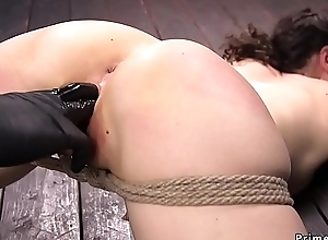 Brunette hogtied increased by fisted increased by fingered