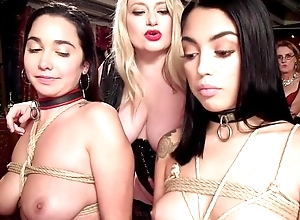 Three submissive brunettes acquire surrounding screwed readily obtainable wild intercourse bandeau